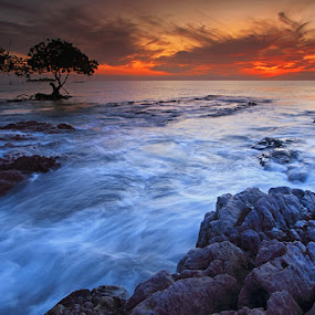 flow by Shikhei Goh II - Landscapes Waterscapes