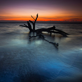 Sunset Passion by Ady Roses - Landscapes Sunsets & Sunrises ( afternoon, indonesia, sunset, beach, landscape )