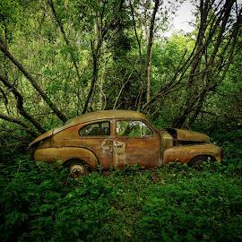 Car & Nature by Susan Wicher - Transportation Automobiles ( car, wood, nature, transportation, rust )