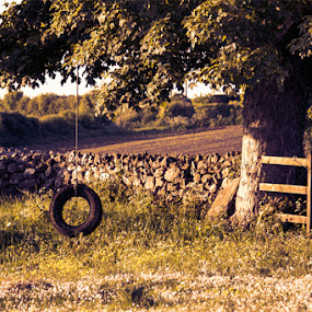Timeless Play  by Michael Croghan - Artistic Objects Still Life ( old stone wall, pwcstilllife, portrait, tire, field, tire swing, tree, leafs, wooden fence, stone wall, swing, positive, branches )