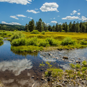 Sagehen Creek through the Meadow by Billy Brooks - Landscapes Prairies, Meadows & Fields ( clouds, stream, ca, meadow, trees )