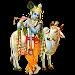 Krishna Ringtones Icon