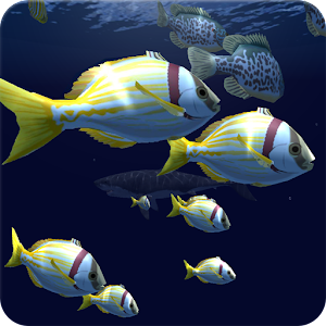 Fish Schooling VR For PC