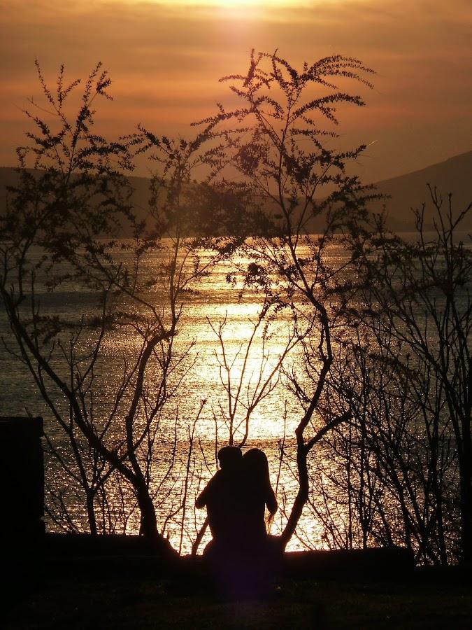 lovers by Čedna Dadić - People Couples ( love, lovers, sunset, sea, sun )