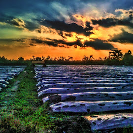 it's time to sleep by Robins Selalu Ada - Instagram & Mobile Android ( mobilography, sky, hdr, sunset, landscape )