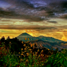 pananjakan, BROMO by Herry (Himura Kenshin) - Instagram & Mobile Android