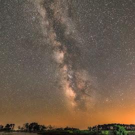 Night Sky Over Blackwatre by Carol Ward - Landscapes Starscapes ( milky way galaxy, night photography, maryland, blackwater national wildlife refuge, landscape, cambridge, starscape, milky way, nightscape )