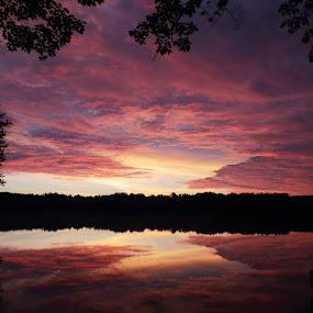 Purple Majesty by Skip Spurgeon - Landscapes Sunsets & Sunrises ( clouds, reflections, lake, sunrise )