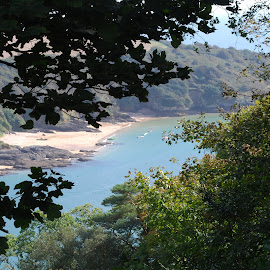 A view from a cliff in Cornwall by Pauleen Stewart - Landscapes Beaches ( cliffs, trees, sea, seascape, beach )