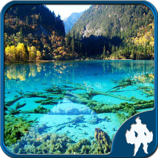 Landscape Jigsaw puzzles 4In 1 (game)