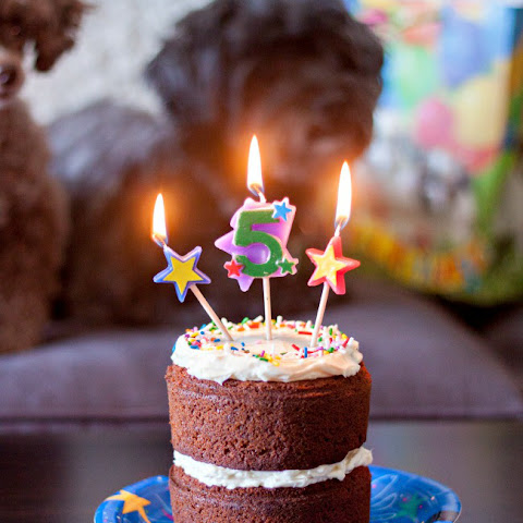 Dog Birthday Carrot Cake with Neufchâtel Cheese Frosting