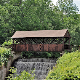 Huckelberry Hill Bridge by Janice Burnett - City,  Street & Park  Neighborhoods ( water, peaceful, park, covered bridge, green, outdoors, outside, ct state park )