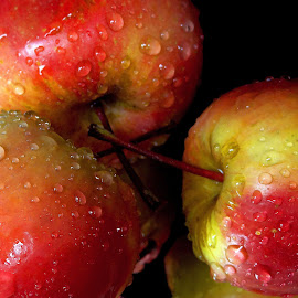 Apples by Asif Bora - Food & Drink Fruits & Vegetables