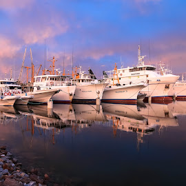 Paspaley's  by Debbie Louez - Transportation Boats