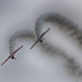 Yaks june by Kelly Murdoch - Transportation Airplanes