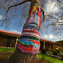 When There Are No Leavs by Kamila Romanowska - Artistic Objects Other Objects ( winter, tree, art, australia, mclaren vale, handmade, knit )