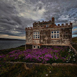 Purple Yard by Þorsteinn H. Ingibergsson - Buildings & Architecture Decaying & Abandoned ( clouds, iceland, sky, nature, structor, flowers, landscape, abandoned )