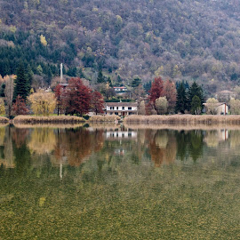 Autumn in Lake of Endine by Pietro Ebner - Landscapes Waterscapes ( tree, autumn, fall, reflecion, lake, endine )