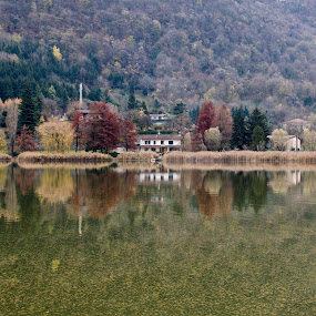 Autumn in Lake of Endine by Pietro Ebner - Landscapes Waterscapes ( tree, autumn, fall, reflecion, lake, endine,  )
