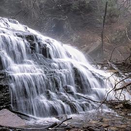 Rickett's Glen Waterfall by Frank Barnitz - Landscapes Waterscapes ( waterscape, horizontal, waterfall, cascades, trees, brown, rocks, woods, misty )