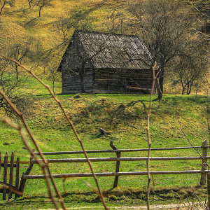 old wooden house.jpg