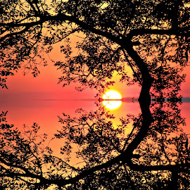 by Linda Woodworth Sulla - Landscapes Sunsets & Sunrises