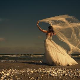 Summer night by Sima Iulian - Wedding Bride ( wedding, summer, sea, landscape, bride )