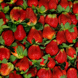 Strawberries  by Aung Kyaw Soe - Food & Drink Fruits & Vegetables (  )