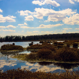 Blue Sky by Theresa Nagy - Landscapes Weather ( water, clouds, blue, beauty )
