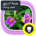 Ayurvedic Herbal Plants Tips APK baixar