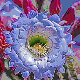 Cacti Blossom by Will McNamee - Digital Art Things ( mcnamee2169@yahoo.com, danielmcnamee@comcast.net, ronmead179@comcast.net, aundiram@msn.com,  )