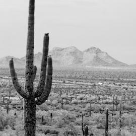 by: DD by Desmond Dantzler - Landscapes Deserts