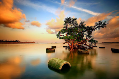 Standing Still by Agoes Antara - Landscapes Waterscapes