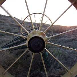 Tire Spokes by Cass Yli - Novices Only Abstract ( farm, old, creativity, tire, golden hour )