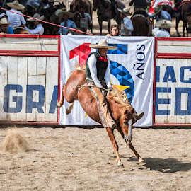 Monta de Yegua by Sergio Yorick - Sports & Fitness Rodeo/Bull Riding ( mare, color, riding, sports, rodeo )