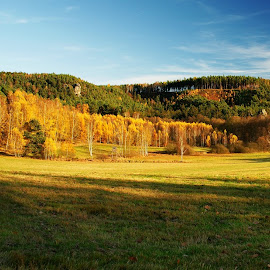 Autumn - panorama by Dagmar Germaničová - Landscapes Forests ( autumn, forest, panorama )