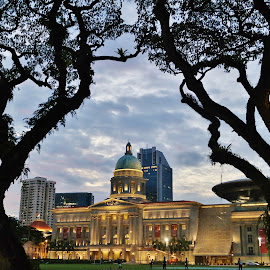 National Art Gallery by Koh Chip Whye - City,  Street & Park  Night (  )