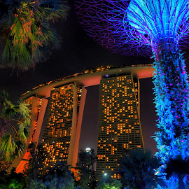Hotel Marina Bay Sands ,Singapore by David Loarid - Buildings & Architecture Office Buildings & Hotels
