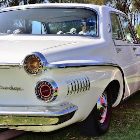 Dodge by Bradley Bath - Transportation Automobiles