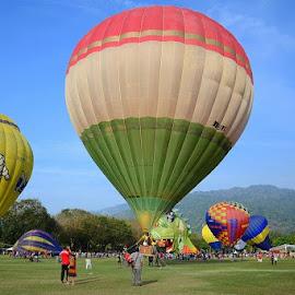 Hot Air Ballon by Wei Ze - Landscapes Prairies, Meadows & Fields