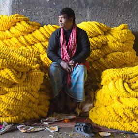 Flower_Man  by Vishal  Singh - People Portraits of Men ( store, colors, kolkata, travel, people, flower_market, flower )