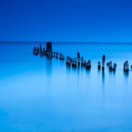 Under the Moonlight by Sue Matsunaga - Landscapes Waterscapes