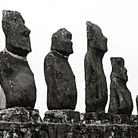 Five Stone Observers. by Marcel Cintalan - Buildings & Architecture Statues & Monuments ( maoi, five, easter island, statues, observers,  )