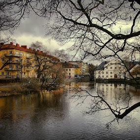 Uppsala, Sweden by Issam Shaheen - Instagram & Mobile Android ( uppsala, uppsalastad, sverige, sweden, scandinavian, loves_sweden, photographer, photographers, photo, photos, photographey, photoshoot )