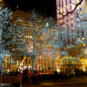 by Barbara Suggs - Public Holidays Christmas