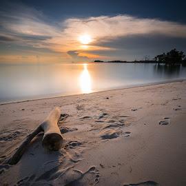 Damai by Andy Prasetyo - Landscapes Beaches ( sunrises, sea, beach, seascape, landscape, beaches, indonesia, sunset, sunsets, landscape photography, branch, long exposure, sunshine, sunrise, landscapes, longexposure, branches, golden hour )