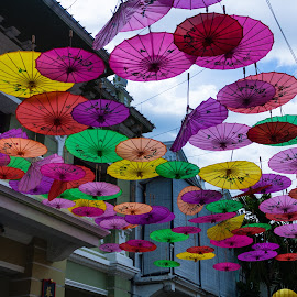 Colorful Umbrellas by Budiawan Hutasoit - Artistic Objects Other Objects ( umbrellas, colorful, umbrella )
