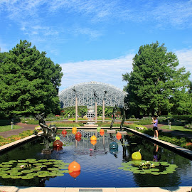 Climatron and reflecting pools by Margie Troyer - City,  Street & Park  City Parks