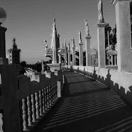 STATUES by Voltaire Anthony Rosario - Buildings & Architecture Places of Worship ( railing, lighting, shadow, statues, sun rays,  )
