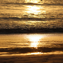Golden Sea by Nikhil Mali - Nature Up Close Water (  )